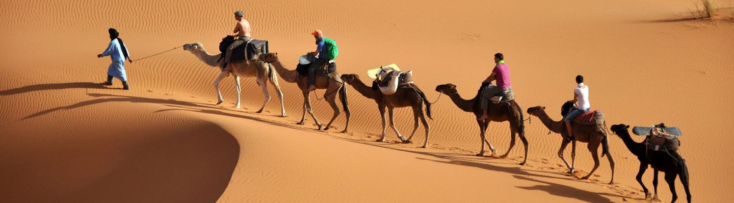 Excursion-in-the-desert